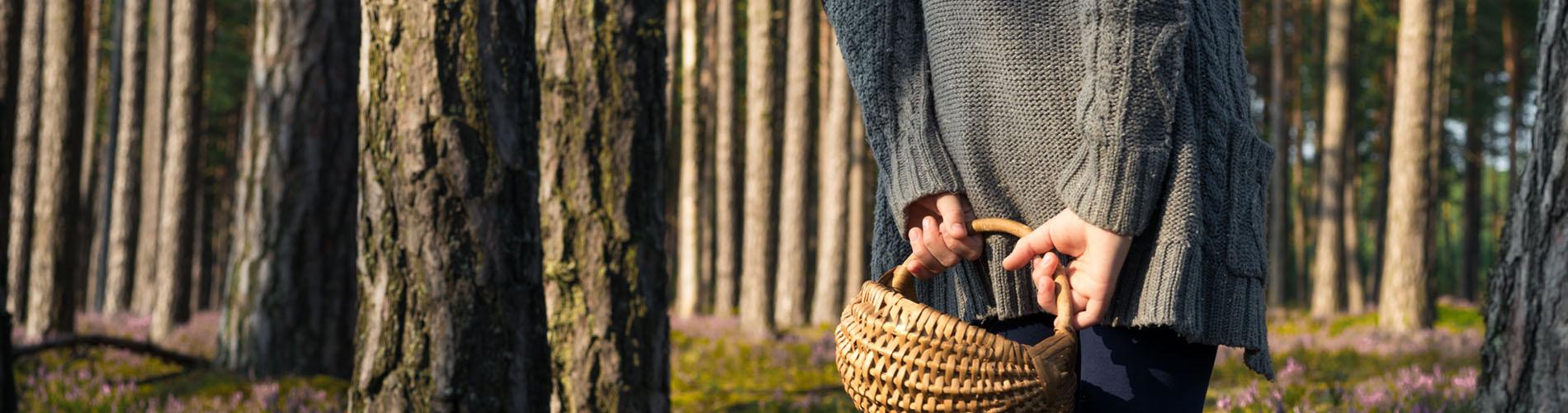 manos de persona con una cesta cogida a la espalda en un bosque