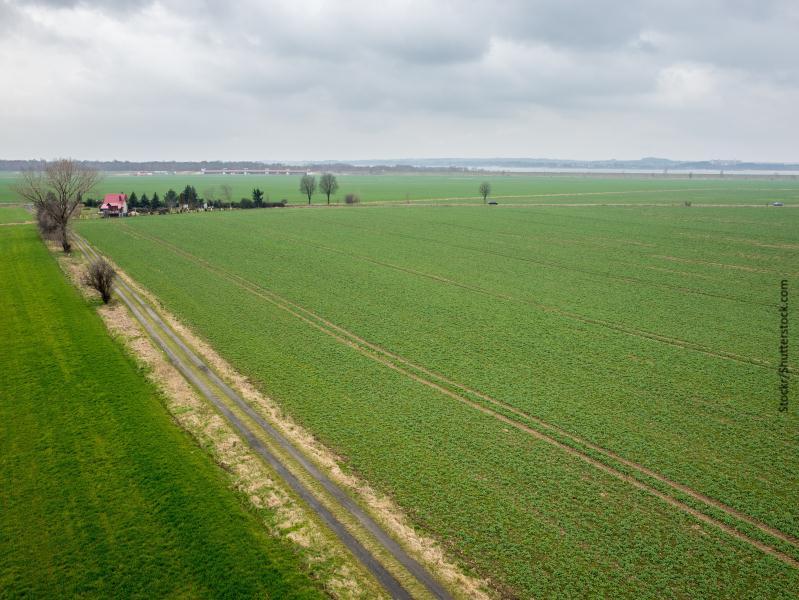 Extensión de terreno verde con casa granja aislada