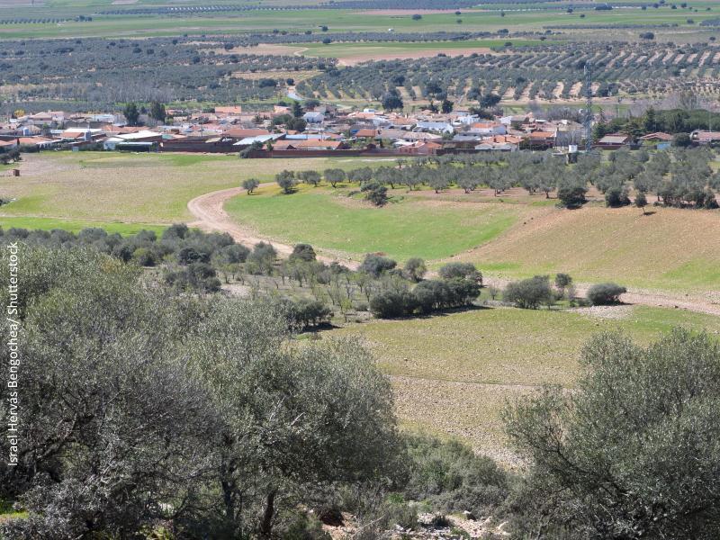 Campos de Castilla La Mancha