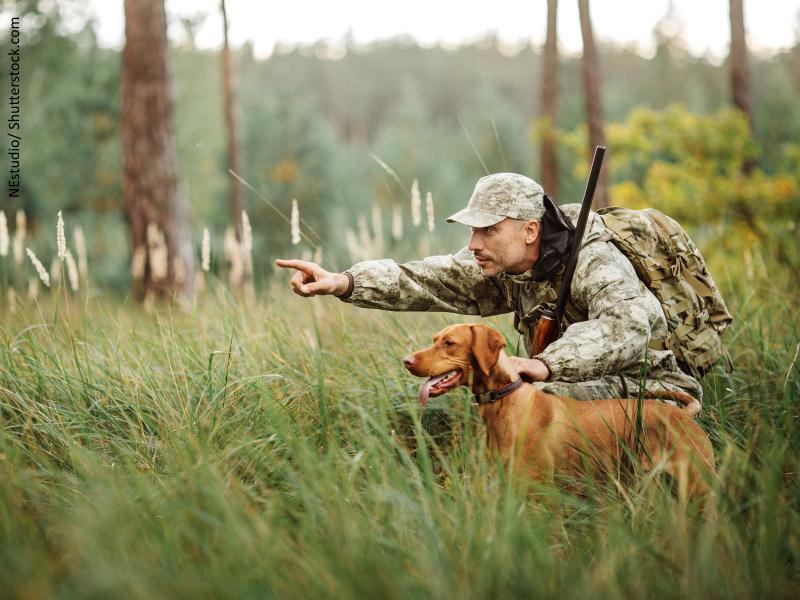 cazador agachado dándole instrucciones a un perro