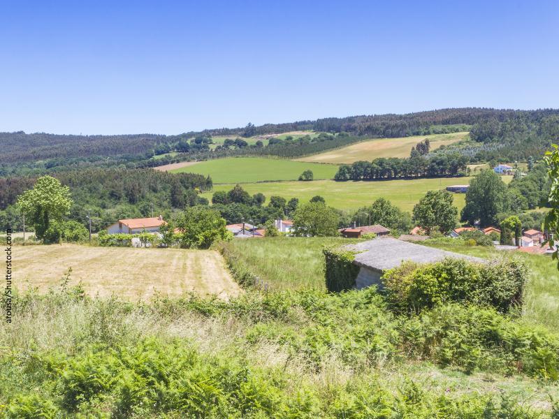 Vista del campo con casas diseminadas en Galicia