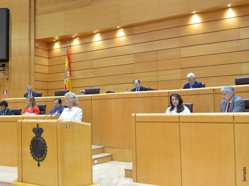 El Defensor del Pueblo estrena una app para acercar la Institución a los ciudadanos