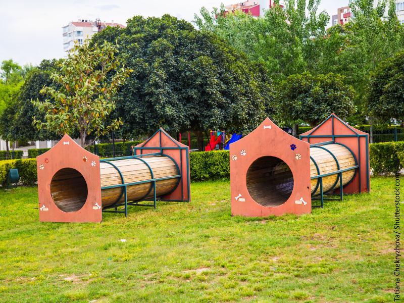 parque para perros