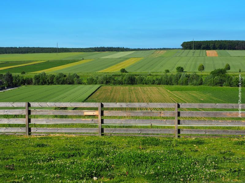 Fincas rurales con valla