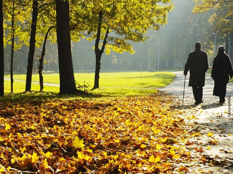 Pareja de espaldas paseando por un parque en otoño
