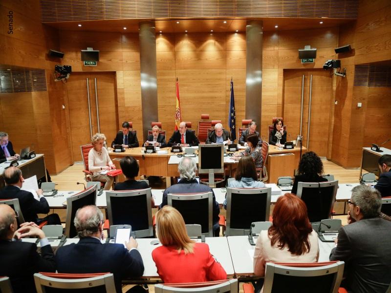 Defensor del Pueblo (e.f.), Francisco Fernández Marugán, compareciendo ante la Comisión Mixta en el Senado ante Comisión Mixta