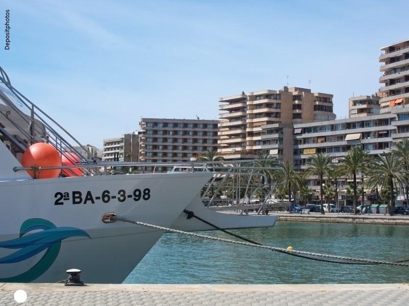 Vista de la bahía de Palma de Mallorca con edificios de apartamentos y paseo con palmeras