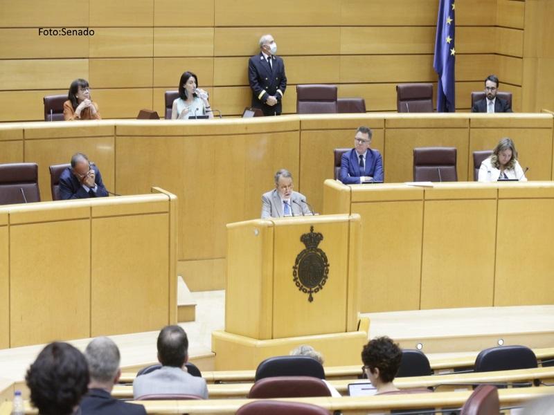 El Defensor del Pueblo (e.f.), Francisco Fernández Marugán, interviene en el Pleno del Senado