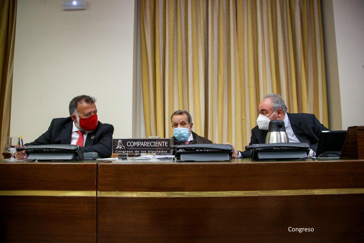Comparecencia del Defensor del Pueblo (e.f.), en el Congreso para explicar sus actuaciones durante la crisis del COVID19