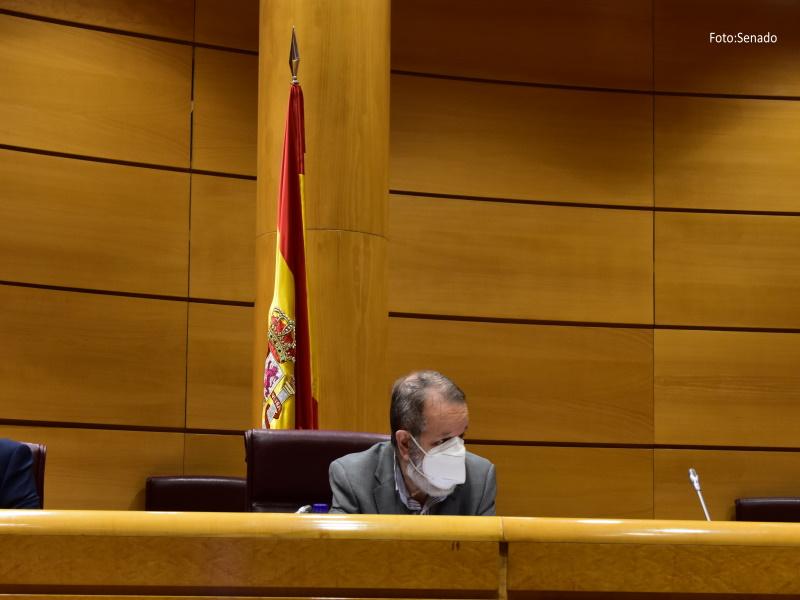 Comparecencia Informe Canarias