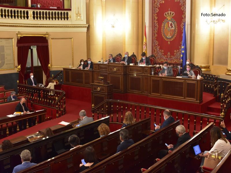 Comparecencia del Defensor del Pueblo ante la Comisión Mixta para presentar el Informe Anual 2020