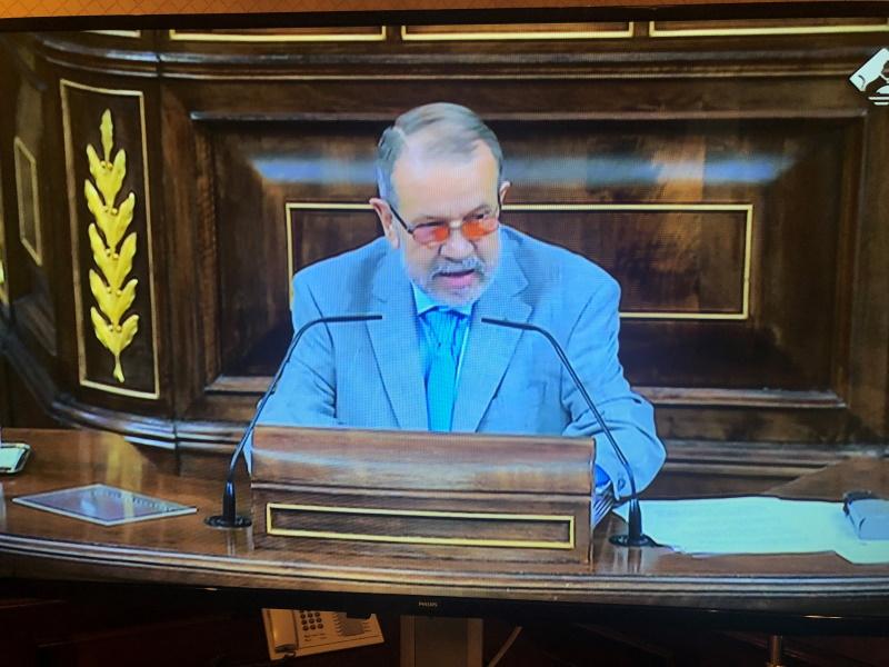 Debate parlamentario del Informe Anual 2020